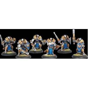 Cygnar Sword Knight Unit Box Warmachine: Toys & Games