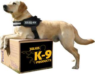 Julius K9 IDC power harness with siderings, 2 colors