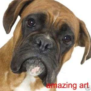Original Hand Painted Dog Animals Oil Painting Boxer