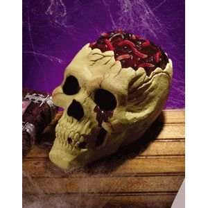 Skull w/Bloody Brain Halloween Accessory: Home & Kitchen