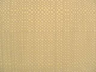 Drapery Upholstery Fabric Nubby Raw Silk    Chiffon