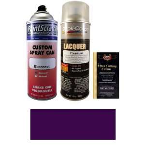 12.5 Oz. Dark Mulberry Metallic Spray Can Paint Kit for