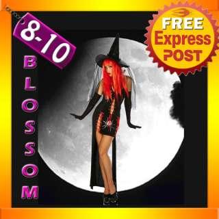 2424 Black Widow Witch Halloween Dress Costume Hat 8/10