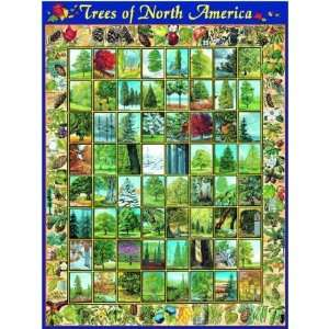 Trees of North America Jigsaw Puzzle Toys & Games