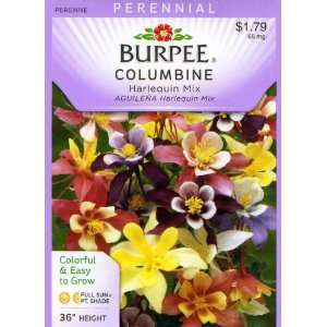 Burpee 38258 Columbine Harlequin Mix Seed Packet Patio