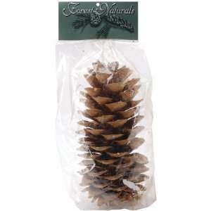Natural Large Sugar Pine Cone Electronics