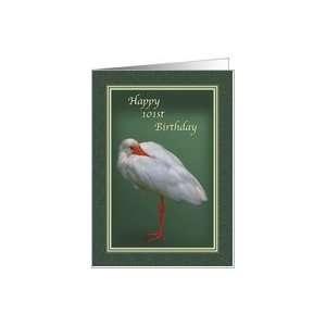Birthday, 101st, White Ibis Bird Card Toys & Games