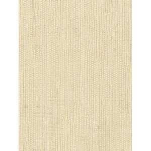 : TEXTURED LIFESTYLES Wallpaper  TL49442 Wallpaper: Home Improvement