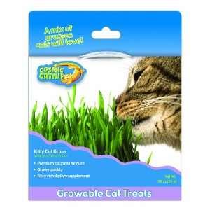 Cosmic Cosmic Kitty Cat Grass Kit