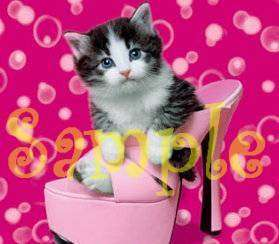 KITTEN IN PINK HIGH HEEL SHOE Italian Charm cat kitty