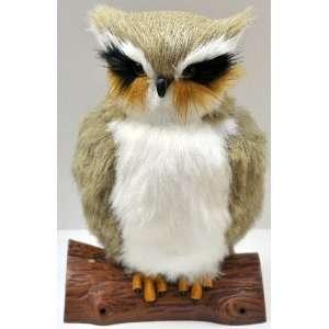 room guard. Animated hooting watch owl, room guard with Owl hooting
