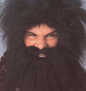 Hagrid Wig and Beard Set, Harry Potter , Favorite Characters, Kids