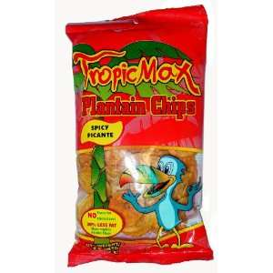 Tropic Max Spicy Plantain Chips   3 oz Grocery & Gourmet Food