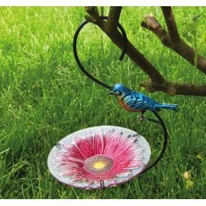 Hook Hanging Feeder, Gerber Daisy and Blue Bird Patio, Lawn & Garden
