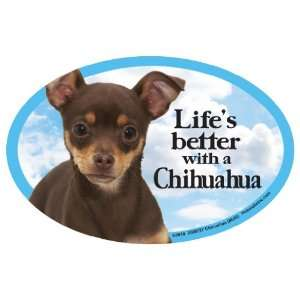 Chihuahua (long) Oval Dog Magnet for Cars: Pet Supplies