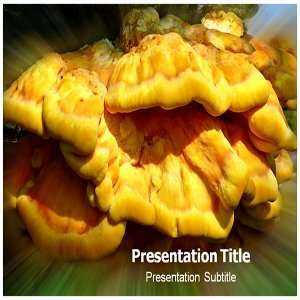 Fungus Parasite Powerpoint Templates   Fungus Parasite Powerpoint (PPT